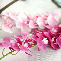 Растения орхидеи фаленопсиса онлайн-Цветок 3 шт. лот 11 головки искусственный Фаленопсис орхидея цветок настоящее прикосновение поддельные Красный Фаленопсис Орхидея искусственные цветы растения декоративные