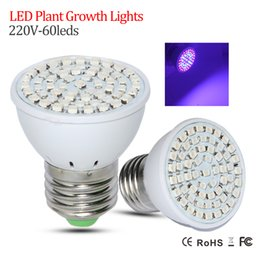 Wholesale Led Ufo Full Spectrum - 1Pcs New LED Full Spectrum E27 60LEDs Faster Growth Lights 41 Red +19 Blue Led Grow Lamps For Flowers Plant Hydroponics Lighting