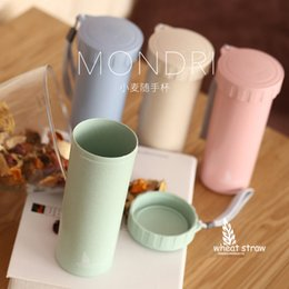 Wholesale Handy China - Wholesale- Wheat straw handy cup creative student drinking cup with lid couple cups of men and women