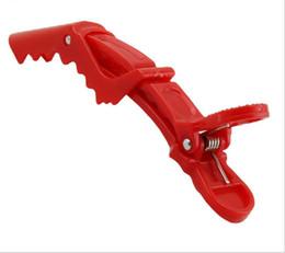 Wholesale Hair Grip Crocodile - Beak Sectioning Clips Crocodile Hairdressing Salon Clamps Hair Grip 6 pcs