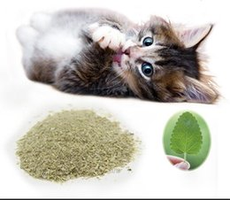 organic leaf Coupons - 2018 Direct Selling Hot Sale Catmint Food Kepp Dry Grade Aaaa 500g Catmint Herbal Leaf Food for Cat High Quality Healthy Catnip Organic Mint