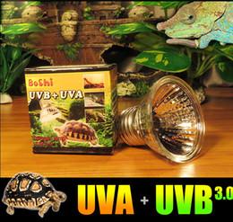 Wholesale Basking Heat Lamp - Sunning Heat Lamp 25~75 Watt Bulb, emits a broad-spectrum light, Provided A Basking Lamp Reptiles, Amphibians, And other Animals
