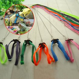 Wholesale Birds Harness - Pet Product Lizard Traction Rope Parrot Pull Rope Adjustable Soft Bird Anti-bite Harness Leash For Small Pet