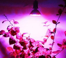 Wholesale Led Ufo Grow E27 - E27 38 LED Grow Light Kits Lamp For Medical Indoor Veg Flower Plants