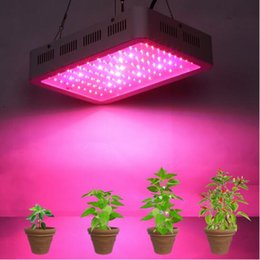 Wholesale Mini Plant Grow Light - NEW Full Spectrum Led Grow Panel Lamp 300W Mini Led Plant Grow Light Best for Hydroponic Systems Flowering Plant Bloom 85-265V