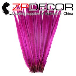 ringneck pheasant feathers Canada - ZPDECOR Wholesale 100pcs lot Size from 16inch to 18inch(40-45cm) Bleach Dyed Hot Pink Ringneck Pheasant Tail Feathers for Showgirl Costumes