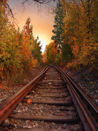 Wholesale Natures Scenery - Railway Photography Background Countryside Autumn Scenery Forest Trees Outdoor Nature View Fall Scenic Photo Backdrops for Studio
