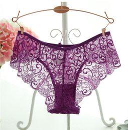 Wholesale Transparent Knickers - S M L XL Big size lace panties transparent candy colors panty thong cotton briefs underwear knickers 5pcs gift