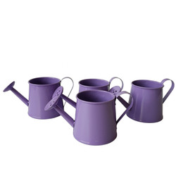 Wholesale Glazed Planters Wholesale - Garden Supplies purple color small watering cans metal flower pot garden bucket planter mini Meat plant pot