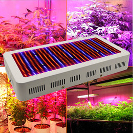 Wholesale Wholesale Growing Lights - High Quality 600W Full Spectrum LED Grow Light Red Blue White UV IR AC85~265V SMD5730 Led Plant Lamps 3 years warranty