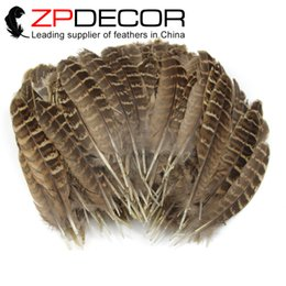 Wholesale Wholesale Quill Feathers - ZPDECOR 100 pieces lot 8-15cm(3-6inch) Pretty Natural Hen Ringneck Pheasant Hen Quill Wing Feathers For Carnival Decoration