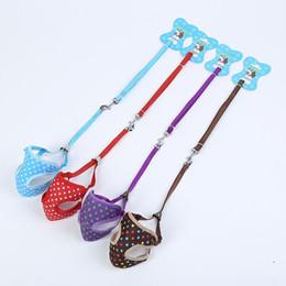 Wholesale Lace Leash - Harness Leash Set Heart Sailor Prints Pets Walking Vest Cotton Chest straps Lace Dog Leashes Free Shipping