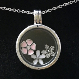 Wholesale Enamel Link Necklace - Authentic 925 Sterling Silver Necklace Enamel Poetic Blooms Charm Locket Necklace Compatible With Pandora Diy Jewelry HKA4305