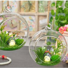 Wholesale Wholesale Glass Terrariums - 6 8 10 cm Creative Hanging Glass Vase Succulent Air Plant Display Terrarium,Small Hanging Glass Vase Air Plant Terrarium