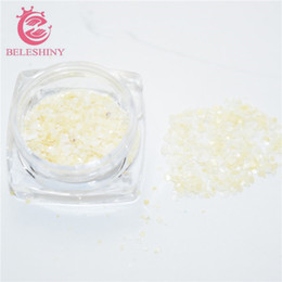 Wholesale Nail Chips - Wholesale- Beleshiny 3g box Crushed Shell Chips Powder For UV Acrylic System 3D Nail Art Decoration Rhinestones For Nails Free Shipping F
