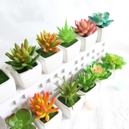 Wholesale fake petals - Mini Simulation Succulents Tropical Cactus Fake Flowers Zakka Artificial Potted Plants With Vase Bonsai For Office Home Decorative 3 7fm R
