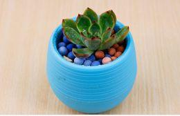 Wholesale Green Garden Tools - DHL Colorful Plant Pot Plastic Round Sucuulent Plant Pot Home Office Desktop Garden Deco Garden Pots Gardening Tool