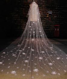 Argentina Catedral romántica Velos de novia Flores de gota Marfil Tulle Velo nupcial largo Novia Accesorios de boda Suministro