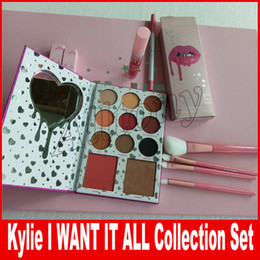 Wholesale Color Bug Set - Kylie Jenner I WANT IT ALL The Birthday Collection Makeup Set Eyeshadow Palette Charming Lip Gloss August Bug Kylie Collection Set