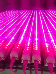 4FT 1200mm T8 Integrated Spectrum completo 24W Led Grow Light Tube Red5: Blue1 / Red9: Blue1 Lámpara de crecimiento vegetal desde fabricantes