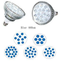 Wholesale Par38 Led 36w - Hydroponics Grow Lamp 90W 54W 45W 36W 27W 21W Blue 460nm E27 LED Grow Light Bulb PAR38 Plant Grow Lighting