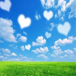 Sfondi di cuore online-Fondali a forma di cuore di cielo blu Photo Booth Fondali Studio puntelli Green Grass Scenic romantico San Valentino Matrimonio Sfondi per la fotografia