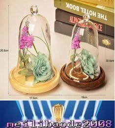 Wholesale Desk Ornament - Glass Cloche Inches Hnadmade Decorative Transparent Vase Office Desk Decor Christmas ornaments flower pots Decorations MYY