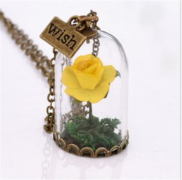 Wholesale beauty beast necklace - Women Girl's Pendant Necklace Beauty and the Beast Glass Bottle With Rose Flowers Wish Pendant Necklaces for ladies party gifts