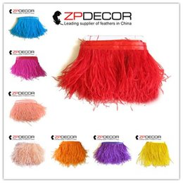 Wholesale Wholesale Ostrich Feather Trimming Fringe - ZPDECOR 2016 New Arrival 10-15cm(4-6 inch)Premium Quality Hand Selected Dyed Mix Colored Ostrich Feather Trim Fringe Cheap Sale for Clothes