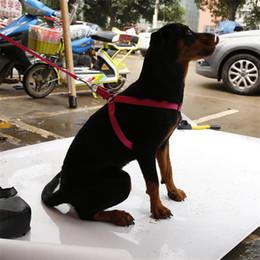 Wholesale Dog Collars Leashes Sets - Reflecting Nylon Lare Pet Dog StepHarness Safety Nylon Dog Harness Pet Harness Set Dog Puppy Cat Step in Harness With Leash Set