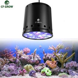 Luces led para acuarios de arrecife online-CF Grow 100W 150W Agua salada Marina LED Luz para acuario Full Spectrum 2.4G SPS Coral Reef Seaweed Grow Lamp Sea Fish Tank Lighting