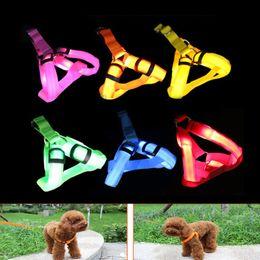 Wholesale Harness Leather Belts - 6 Colors LED Flash Night light Dog Harness Collar Belt Pet Cat Dog leather Safety Light Collars Pet supplies Flashing LED Leashes