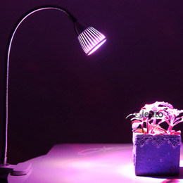 Wholesale Clip Flexible Desk Lamp - LED Grow Lights Ingleby 5W LED Clip Desk Lamp Clamp Flexible Neck 360 Degree For Hydroponic Garden Greenhouse