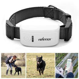 Wholesale Wholesale Pet Collars China - Popular Mini Pet Tracker With Collar GSM GPRS Positioning Real Time GPS Tracker Dog Pet TK909 LK909 with retail box