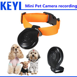 Wholesale Top Spy Cameras - Wholesale-spy mini camera Pet Cam Camera Collar Video Recorder Monitor Suitable New Overvalue Top Quality DigitalFor Dogs Cats Puppy