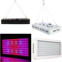 Wholesale 1000w w led grow light Recommeded High Cost effective Double Chips full spectrum led grow lights for Hydroponic Systems