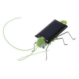 pájaro volador de juguete al por mayor Rebajas Venta al por mayor- Saltamontes de energía solar. Solo colóquese en el sol y vea cómo sus piernas se mueven y menean