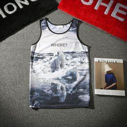 Wholesale Bear Sexy Top - Wholesale- 2017 Summer New Men Tank Top 3D Animal Print Polar Bear Sleeveless Single-layer Mesh Vest Fitness Tops Tees M-XXL
