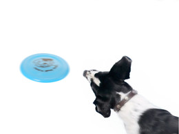 Wholesale Throwing Flying Toys - Pet Toys for Dogs pattern dog Frisbee Multi Colors Soft Toys Throwing Safe Non-Toxic Perfect For Pets Outdoor Playing Training
