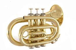 Argentina Modo: B pintura número de palma de oro instrumento Suministro