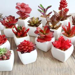 Bonsai cactus artificiali online-Piante artificiali con vaso bonsai tropicale cactus falso succulente in vaso ufficio decorativi per la casa vasi di fiori di simulazione 4 3ys R