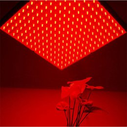 Wholesale 225 led - All Red 14W LED Plant Grow Light SMD 225 LED Grow Lamp Indoor Plant Flowering