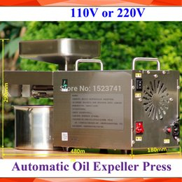 Wholesale Nut Seeds - Wholesale- Commercial Grade 304 Stainless Steel Olive Oil Press Machine Nut Seed Automatic Oil Presser High Extraction