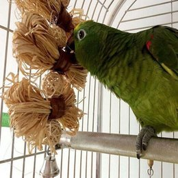 Wholesale Bird Cage Parrot - Lovely Pet Conure Cockatiel Parakeet Chewing Toy Parrot Bird Bites Swing Loofah Vine Balls Cages Toys