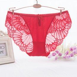 Wholesale Wholesale White Apparel - Fashion bowknot cute lace panties Low waist briefs transparent underpants lace hollow women's underwear apparel accessories
