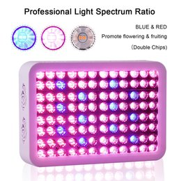 Wholesale Indoor Grow Lights Cheap - 2017 Cheap Full Spectrum 300W Led Grow Lights for Hydroponic indoor garden greenhouse plants veg grow