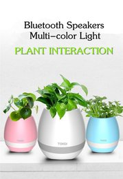 Wholesale Night Light Mobile - TOKQI Bluetooth Smart Music Flower Pots Intelligent Real Plant Touch Play Flowerpot Colorful Light Long Time Play Bass Speaker Night Lamp