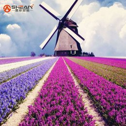 Wholesale Flower Imports - 100pcs bag Imported Provence Lavender Seeds of Native Species Lavandula angustifolia Flower Seeds Potted Plants for Home&Garden