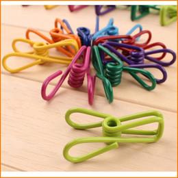 Pinzas de ropa online-(Color de la mezcla) Excelente calidad 10 piezas / lote Ropa de primavera de acero inoxidable Calcetines Colgando clavijas Clips Abrazaderas de lavandería