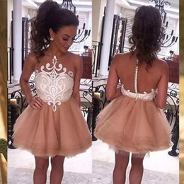 Wholesale Pink Home Coming Dresses - See Trough Sexy Home coming Dresse Short Mini TuTu skirts Back to school party Dancing Dresses Zipper with button Exquisite Gowns